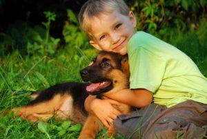 Jogger und Hunde